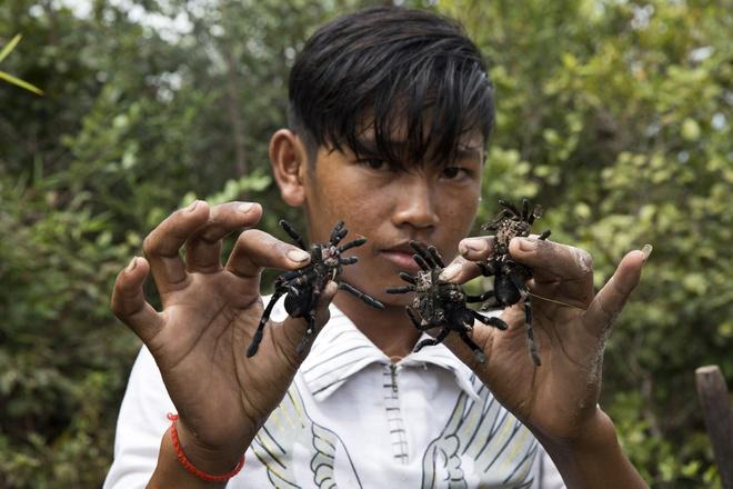 San nhen van trong rung o Campuchia hinh anh