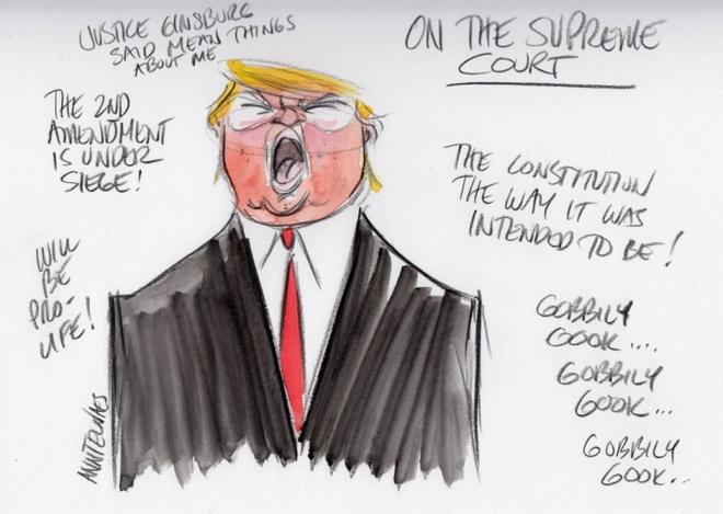 Trump tro thanh 'nguoi dan ba xau tinh' qua tranh biem hoa hinh anh 2