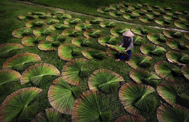 Hinh anh Viet Nam tuyet dep tren National Geographic 2016 hinh anh