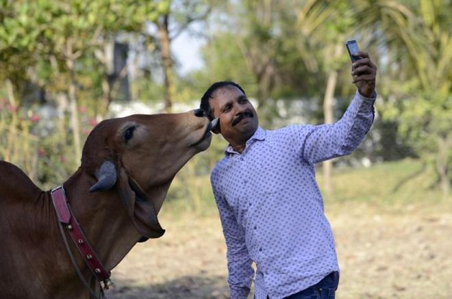 anh selfie ky la anh 5