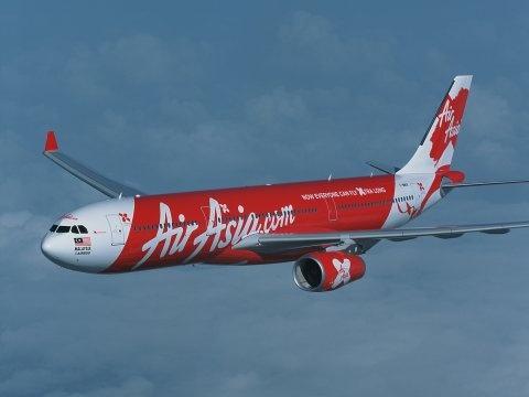 Chim lao vao dong co, may bay AirAsia ha canh khan cap hinh anh
