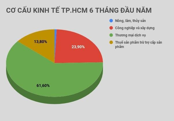 Doanh nghiệp tại TP.HCM giải thể tăng 71,2% - Ảnh 1