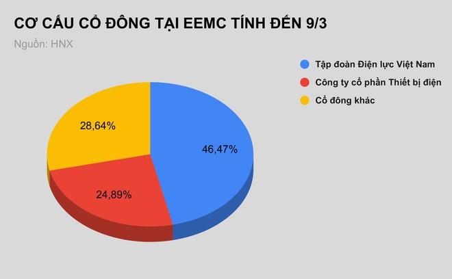 EVN thoai von 13, 1 trieu co phan tai Thiet bi dien Dong Anh anh 1