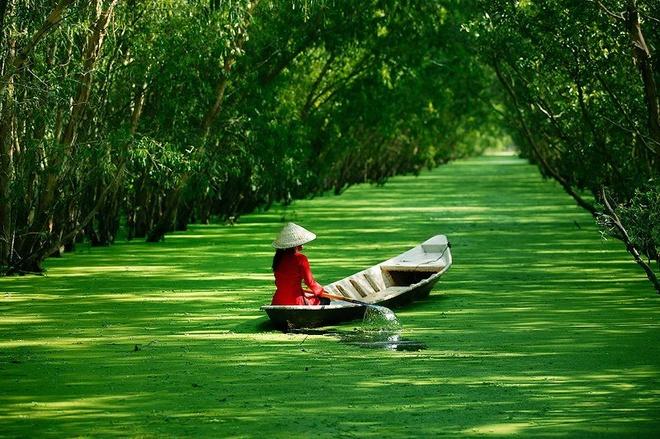 10 thang canh du lich hap dan nhat Viet Nam hinh anh 15 8. Đồng bằng sông Cửu Long. Là một bộ phận của châu thổ sông MeKong, còn được gọi là  đồng bằng Nam Bộ hoặc miền Tây Nam Bộ, tổng diện tích là 40.548,2 km vuông. Do có bờ biển dài và sông Mê Kông chia thành nhiều nhánh sông, kênh rạch, cù lao, đảo và quần đảo lớn nhỏ thích hợp cho loại hình du lịch sinh thái, trải nghiệm và khám phá.