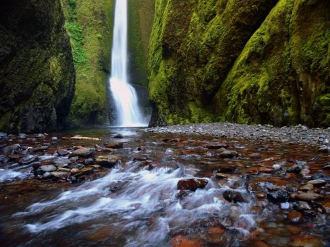 Nhung dia danh sieu thuc khong the bo qua khi toi My hinh anh 2 2. Dòng suối Oneonta Gorge, Oregon: Bạn sẽ như lạc vào một thế giới cổ tích khi đến Oneonta Gorge. Dòng suối này nằm trong Hẻm núi Sông Columbia và là nơi trú ngụ của nhiều loài sinh vật và thực vật phong phú và độc đáo. Rêu bao phủ các bức tường xung quanh, tạo nên một cảnh tượng vô cùng tuyệt mỹ.