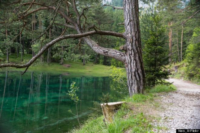 Cong vien nua nam nam tren can, nua nam duoi long ho hinh anh 2 Khu vực xung quanh hồ được sử dụng làm công viên dạo chơi với khung cảnh yên bình và thoáng đãng.