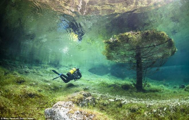 Cong vien nua nam nam tren can, nua nam duoi long ho hinh anh 4 Marc Henauer, một thợ lặn người Thụy Sĩ đã quyết định tìm hiểu về hiện tượng tự nhiên kỳ lạ và khám phá công viên dưới nước này.