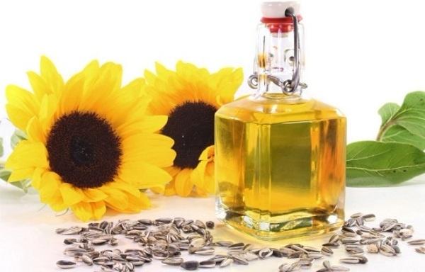 4. Dầu hướng dương: Do vitamin nội dung của dầu E, dầu hướng dương có khả năng hoạt động như một loại kem dưỡng ẩm tự nhiên. Nó cũng có lợi ích khác và và là một lá chắn để phòng ngừa bệnh ung thư da.
