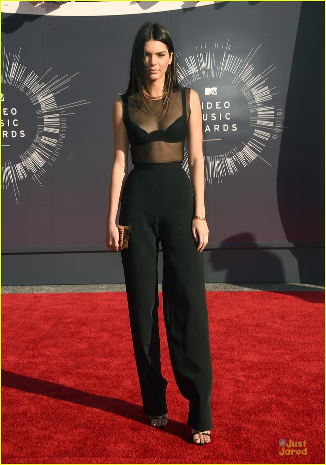 Muon kieu khoe ao nguc goi cam cua Kendall Jenner hinh anh 6