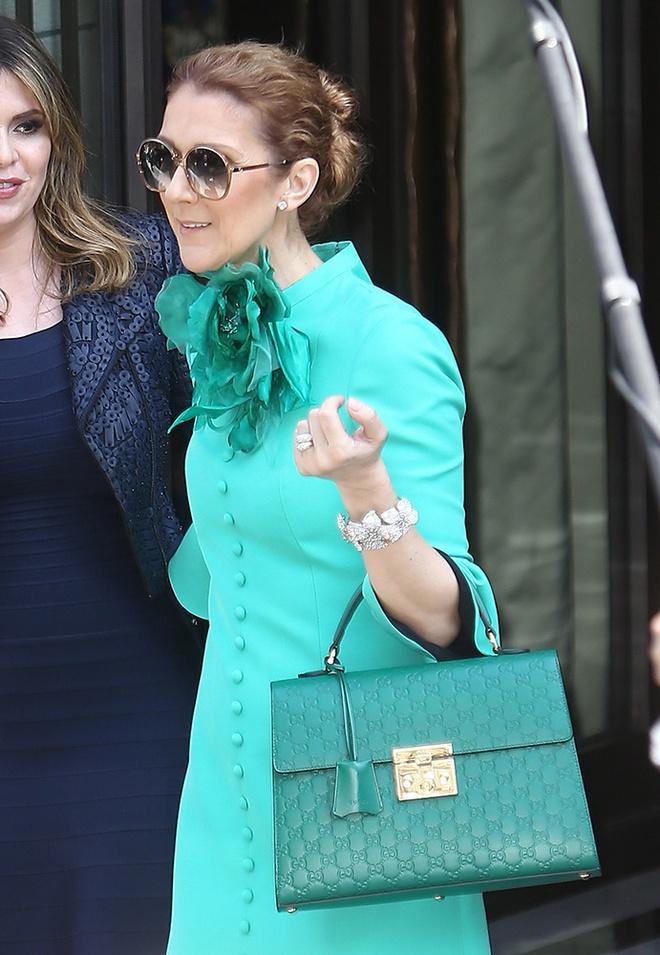 BST tui xach sieu dat do cua Celine Dion hinh anh 4