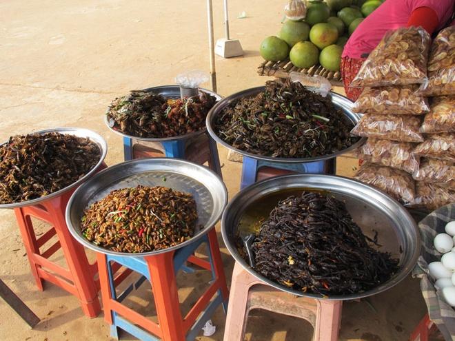 Khởi nguồn cho sở thích ăn côn trùng của nhiều nước trên thế giới, ngày nay nhiều người dân đổi đời nhờ săn bắt và bán côn trùng đi các nước