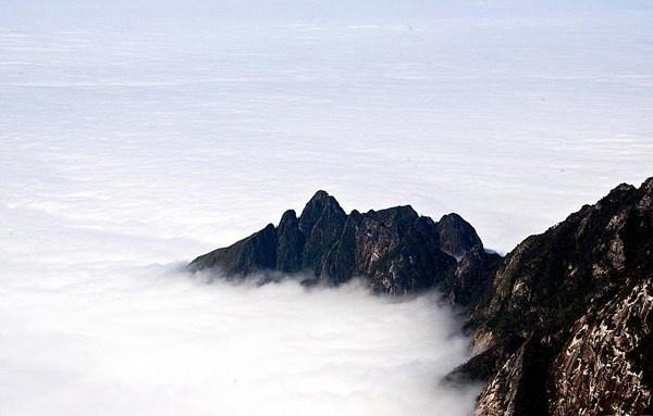 Nhung buc anh khien ban kho tin la chup o Viet Nam hinh anh 6 Núi bồng bềnh trong biển sương tạo nên cảnh quan kỳ ảo vô cùng