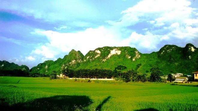 Ngo ngang truoc 'song nui' Cho Chu hinh anh 4 Những tấm thảm xanh bao bọc dãy núi đá