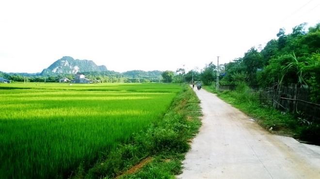 Ngo ngang truoc 'song nui' Cho Chu hinh anh 5 một vùng quê thanh bình xa xa là dãy núi đá