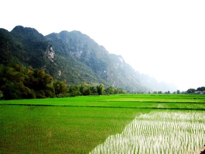 Ngo ngang truoc 'song nui' Cho Chu hinh anh 6 Cảnh sắc thanh bình dưới sóng núi chợ Chu