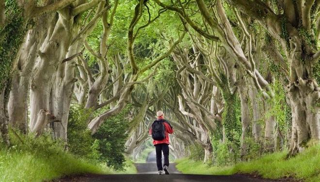 Bắc Ireland, Anh