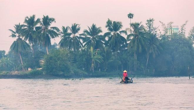 Vùng đồng bằng sông Cửu Long, Việt Nam