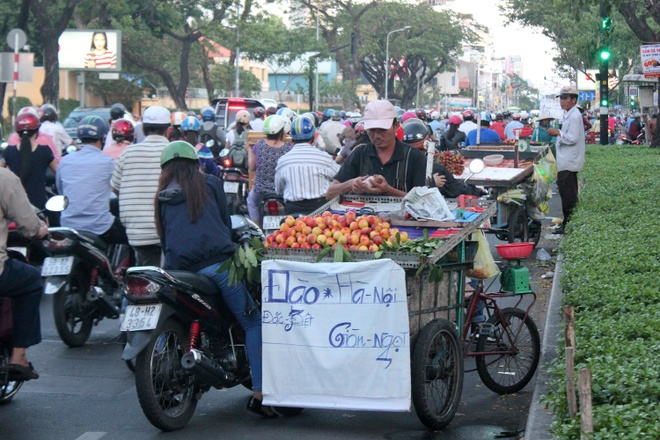 Cho ban trai cay mien Bac no ro tren duong pho Sai Gon hinh anh 6