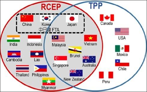 TPP gay ap luc khong nho cho cac nuoc dam phan RCEP hinh anh 1