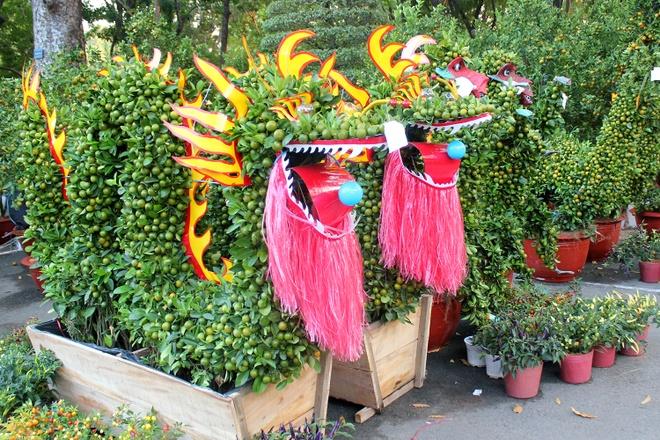 Kieng la hoi ngo o cho hoa Tet Sai Gon hinh anh 3