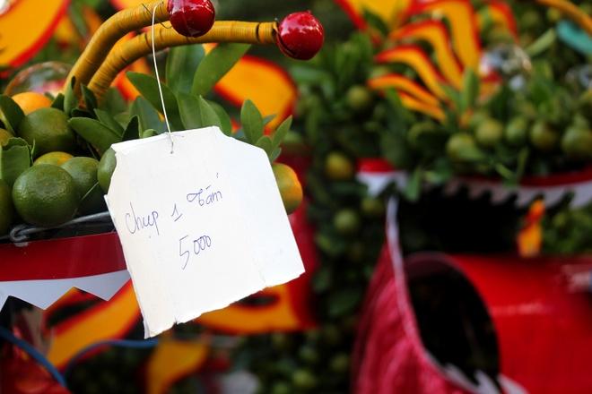 Kieng la hoi ngo o cho hoa Tet Sai Gon hinh anh 6