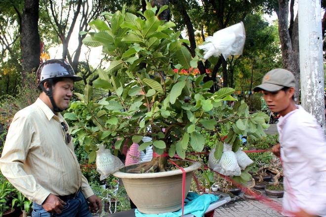 Kieng la hoi ngo o cho hoa Tet Sai Gon hinh anh 9
