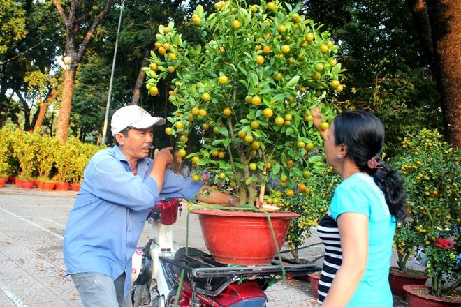 Kieng la hoi ngo o cho hoa Tet Sai Gon hinh anh 11