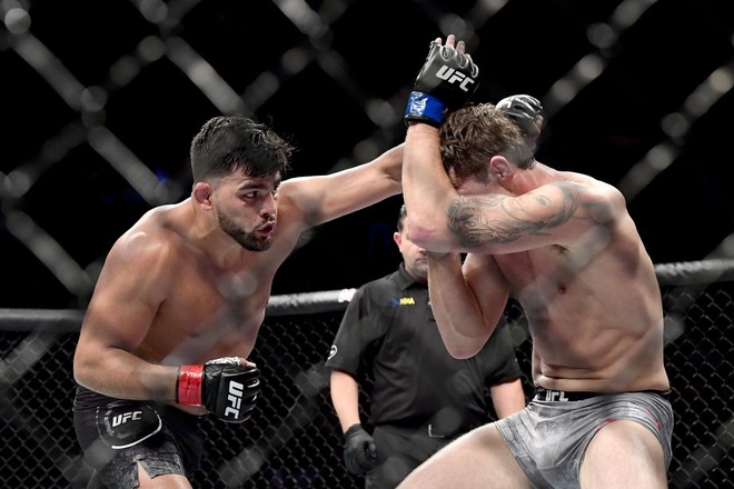 UFC anh 6