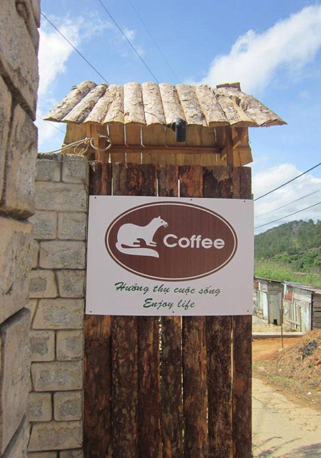 Cận cảnh trang trại cà phê chồn 42 tỷ đồng tại Đà Lạt - Kinh doanh ...