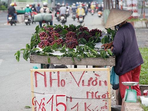 Nho Trung Quoc lai doi lot Ninh Thuan tran ra thi truong hinh anh