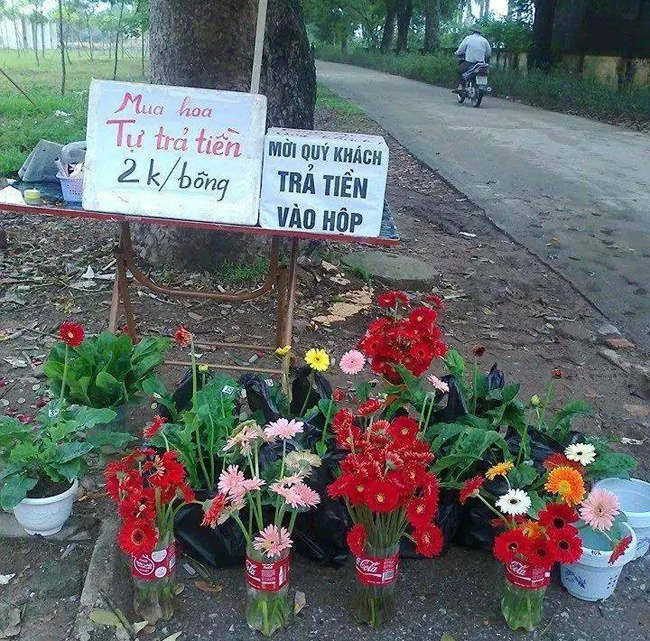Ban hoa tu mua tu tra tien gay sot dan mang hinh anh