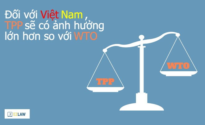 10 kien thuc can ban ve hiep dinh TPP hinh anh 6