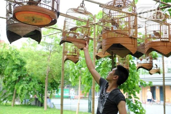Bi mat CLB choi chim dang thu hut gioi tre Ha thanh hinh anh