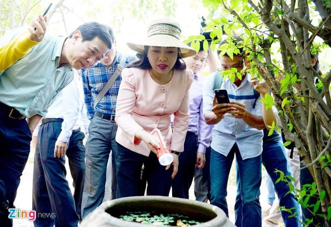 Thai phu 33 tuoi o TP HCM mac Zika do muoi dot hinh anh 2