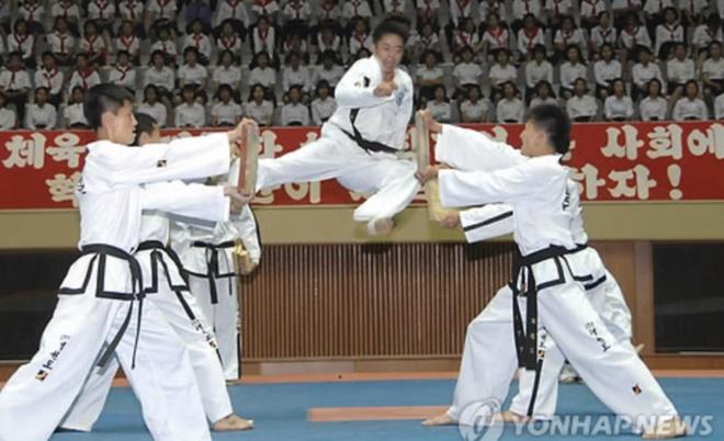 Doi Taekwondo Trieu Tien toi Han Quoc anh 1