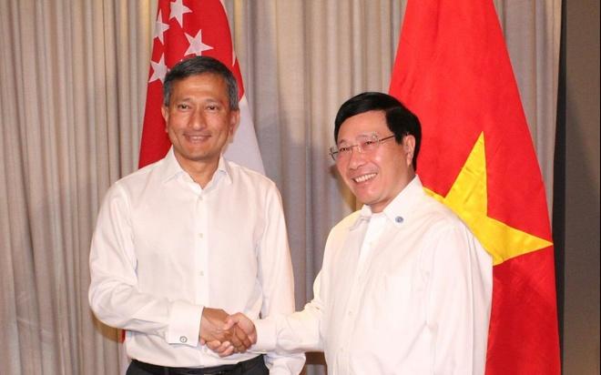 Viet Nam va Singapore thuc day dam phan thuc chat COC hinh anh
