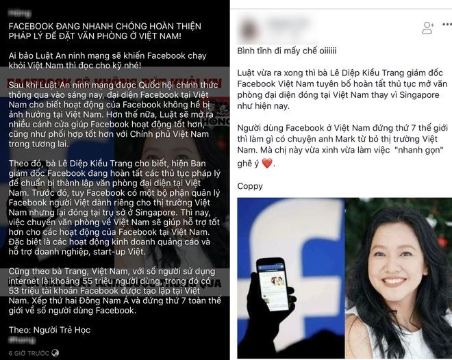 Giam doc Facebook Viet Nam cung la nan nhan cua tin gia hinh anh 1