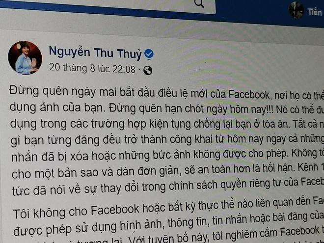 Ca si VN va nhieu nguoi dung mac lua 'dieu le moi cua Facebook' hinh anh 1