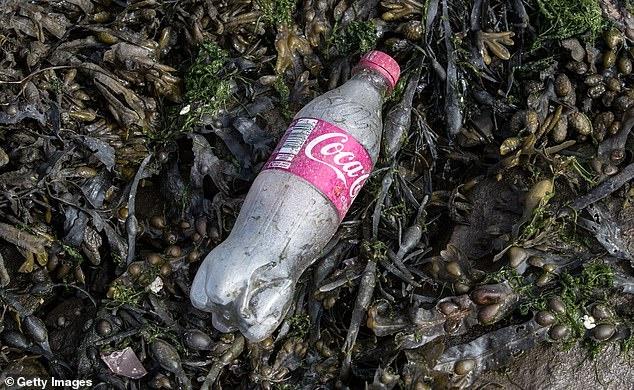 Coca-Cola gay o nhiem rac thai nhua nhieu nhat the gioi hinh anh 1