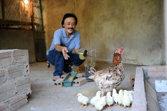 Giang Coi: 'Toi khong the chet cung con ruoi' hinh anh 3