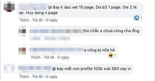 Facebook khoa hang loat fanpage tai VN hinh anh 2