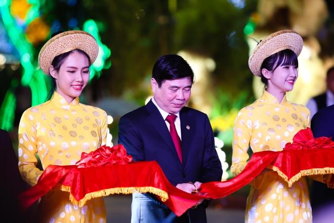Nguoi Sai Gon do ve duong hoa Nguyen Hue dem khai mac hinh anh 1