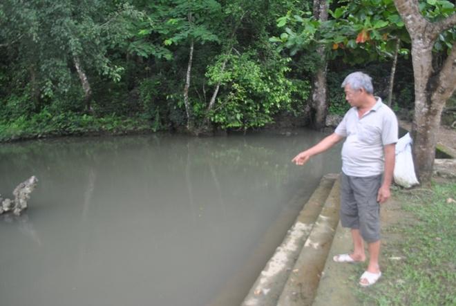 Ba dan ca than dan khong dam an thit o Thanh Hoa hinh anh 3 Ông Xứng, người dân địa phương giới thiệu về đàn cá thần trước mặt.