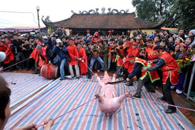 Lệ hội chém lợn diễn ra hàng năm ở làng Ném Thượng, Khắc Niệm, Bắc Ninh.