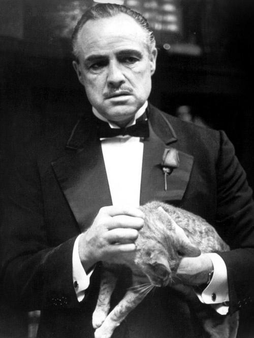 'Bo gia' Marlon Brando: Bi kich mot huyen thoai hinh anh 7