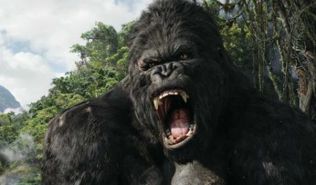 King Kong 2 sap khoi quay o Viet Nam hinh anh