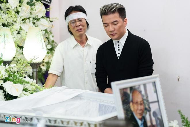Dam Vinh Hung ngam ngui den vieng nhac si Nguyen Anh 9 hinh anh 4