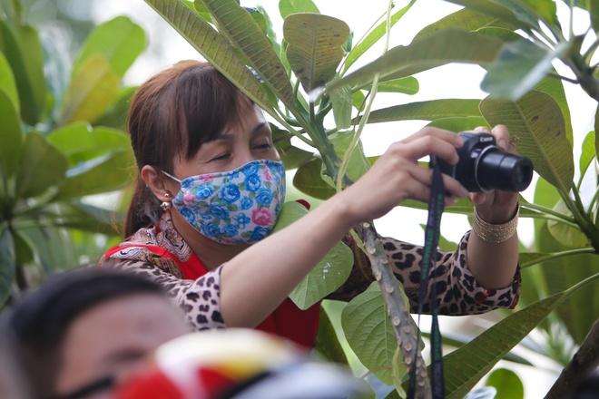 Dam tang NSND Thanh Tong anh 10
