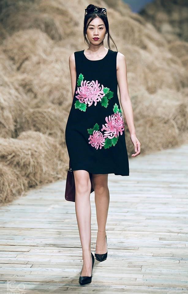 Chuong trinh Vietnam's Next Top Model anh 2