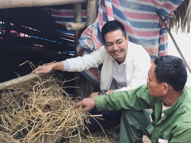Sao Viet hao hung don chao nam moi 2017 hinh anh 2